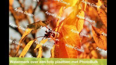 Plaats een watermerk op je foto's met PhotoBulk (Lite)